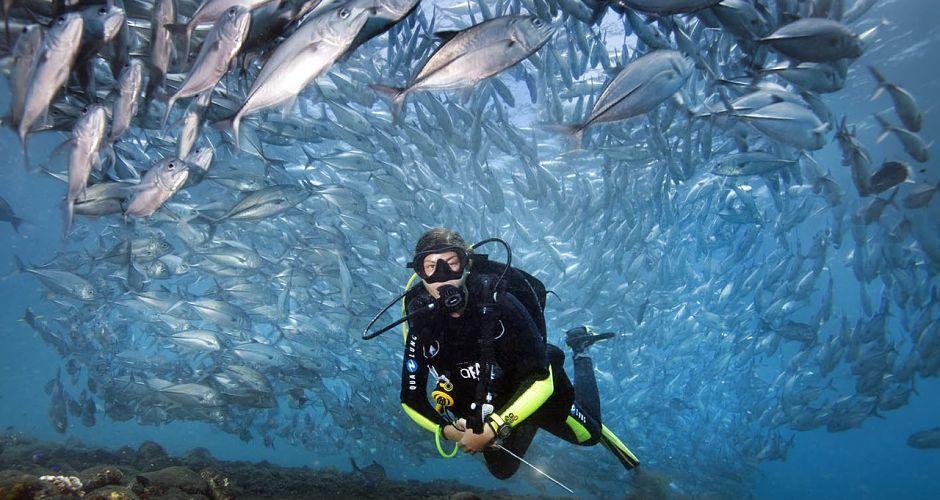 wreck-diving-bali