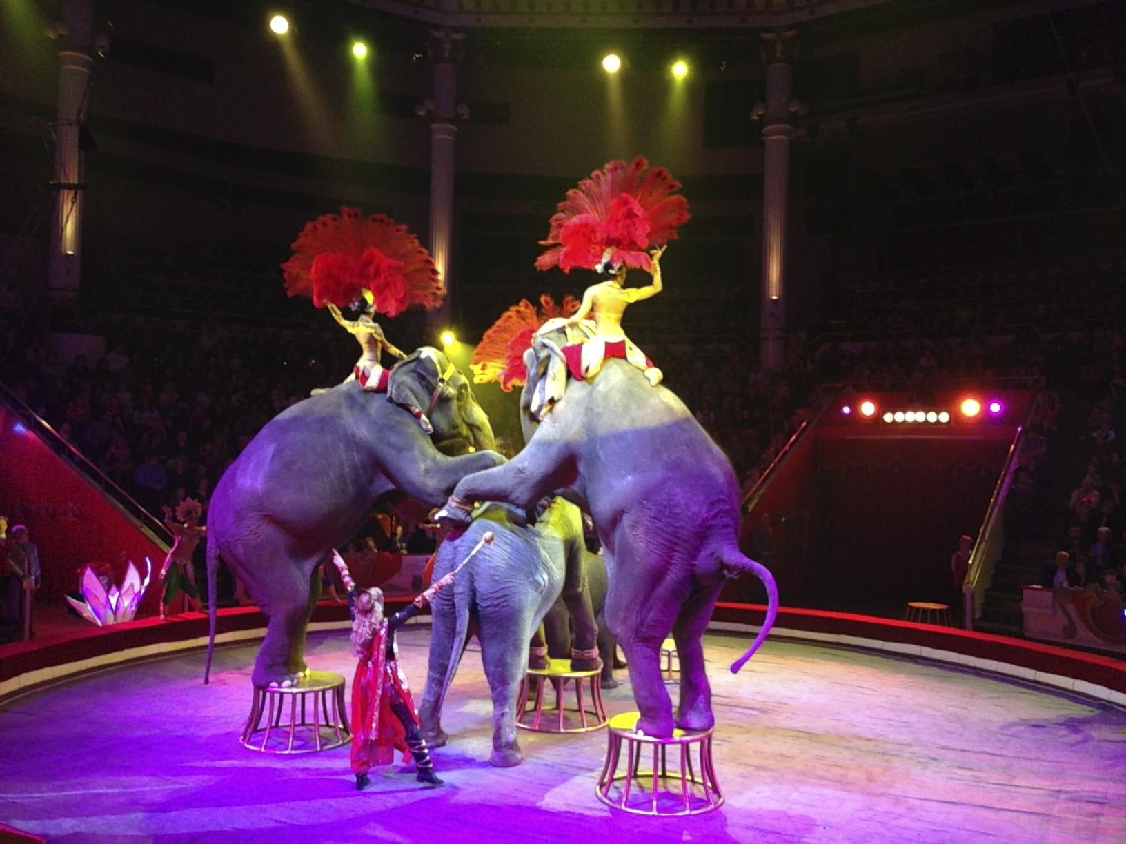 bolshoi-circus-Moscow