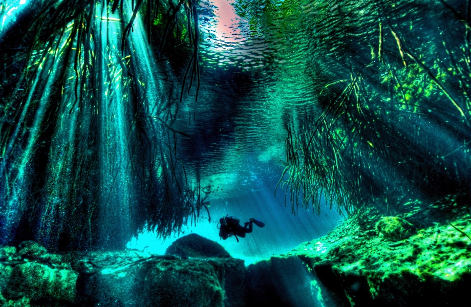 Image Credit : mexicocavediving