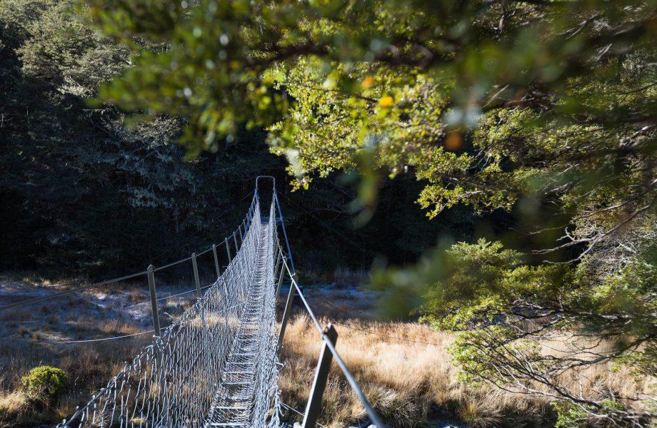 Te Araroa walkway