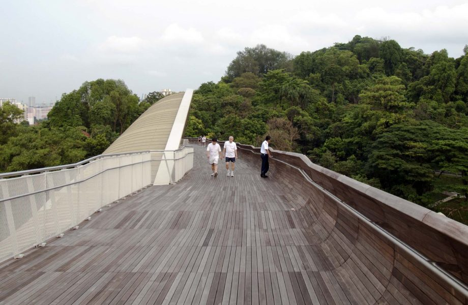 henderson-waves-bridge1