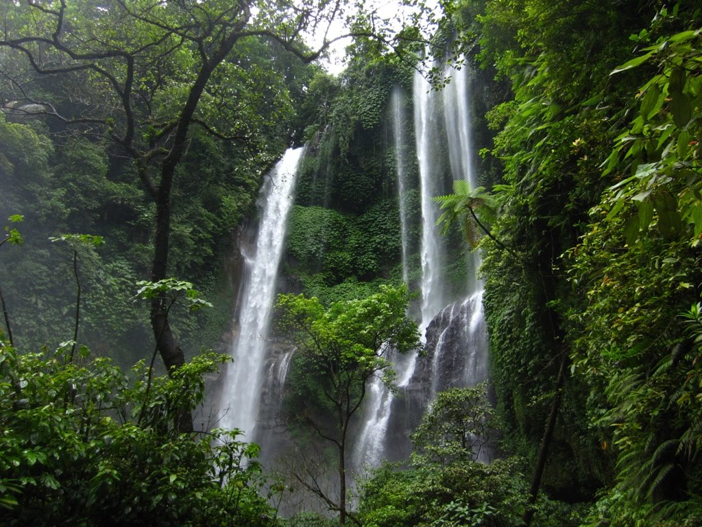 Sekumpul falls: A 7 in 1 Bali tourist attraction