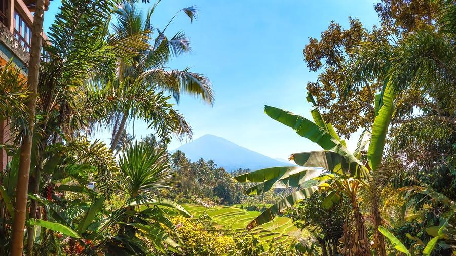 Volcano, Bali, Mount Batukaru, Volcanoes in Bali, Volcano Trekking