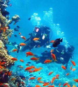 scuba diving in thessaloniki, scuba diving greece, water sports in greece, adventure greece