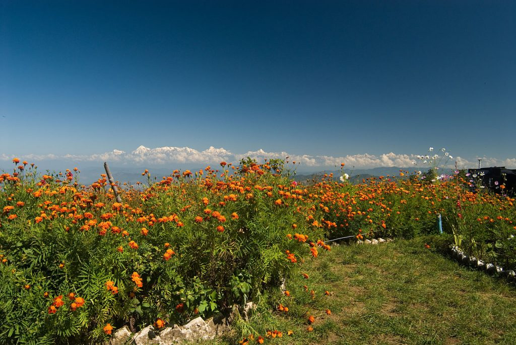 View of peaks from Mukhteshwar, hidden gems among the Places to Visit in Uttarakhand.