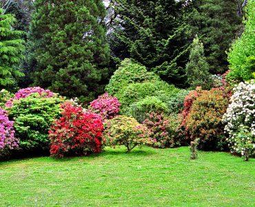 garden in melbourne