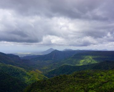 Black River Gorges National Park   Mauritius.