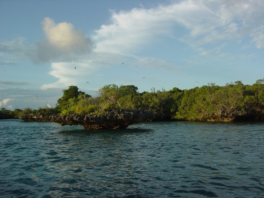 Aldabra Atoll in Seychelles