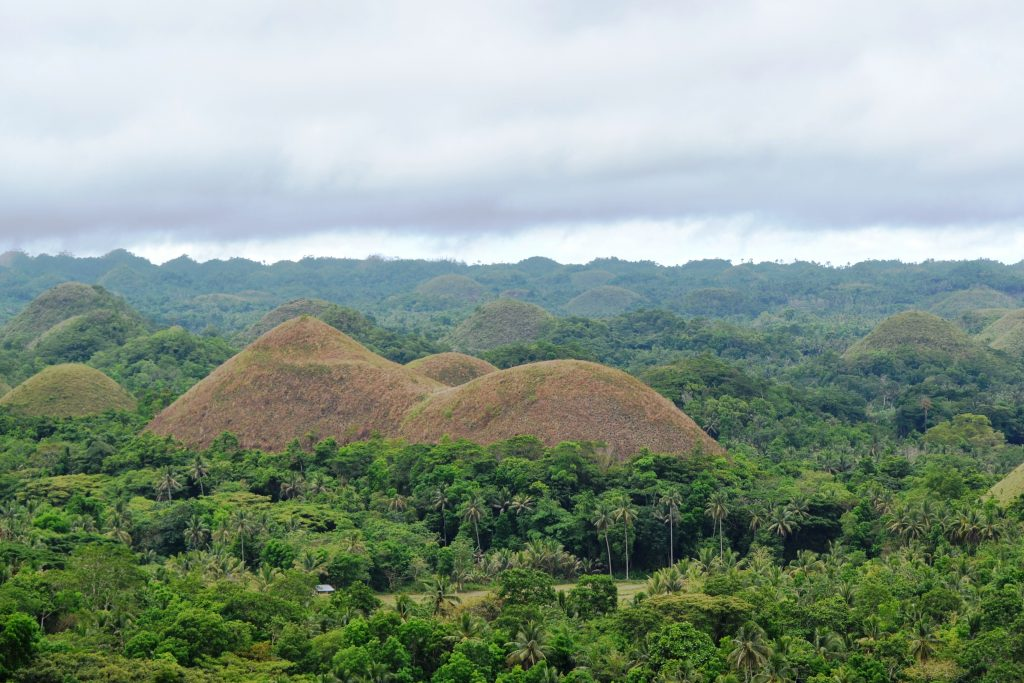 Awesome things to do in Bohol