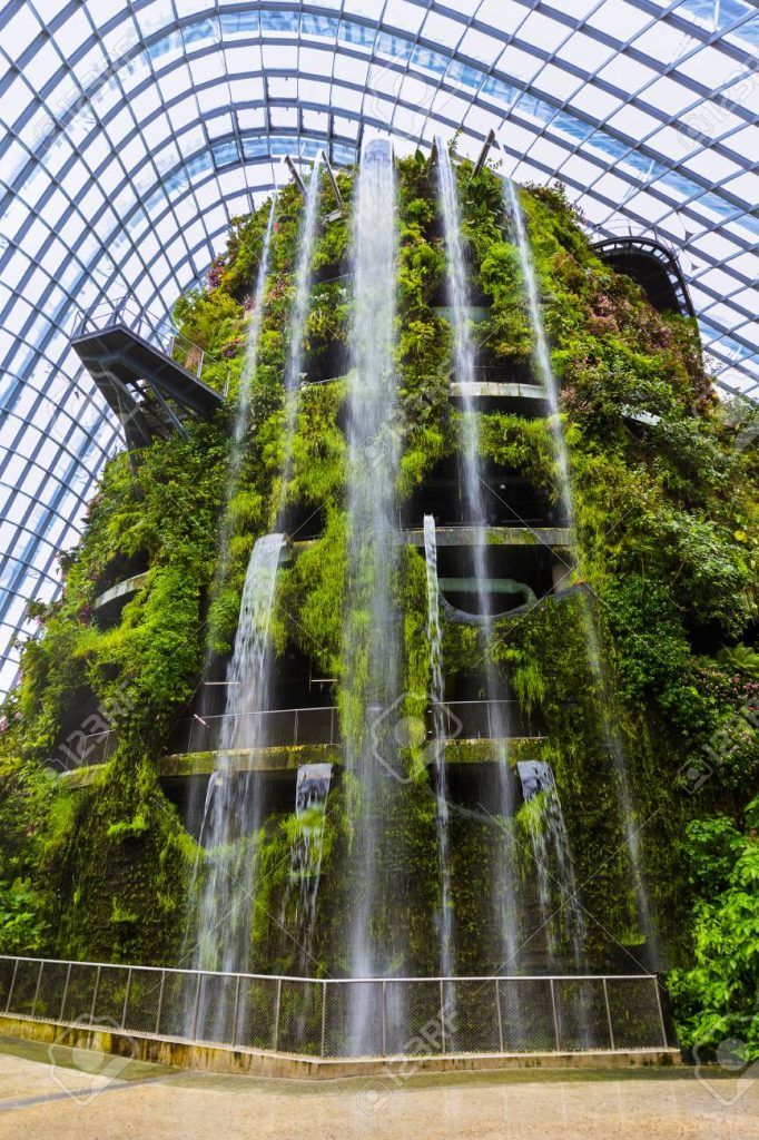 Cloud forest, places to visit on East Coast