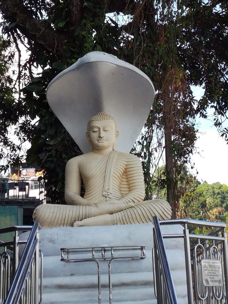 A statue in the Kandy city, Sri Lanka