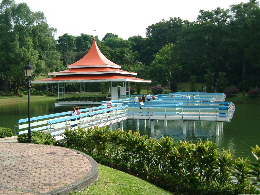 The MacRitchie Reservoir , one of the best places to visit in Singapore for free