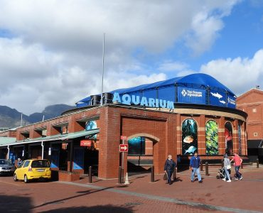 two oceans aquarium capetown