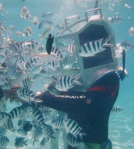 Underwater Sea Walking in Mauritius