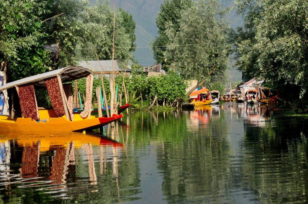 Shikara rides in Dal Lake, Srinagar