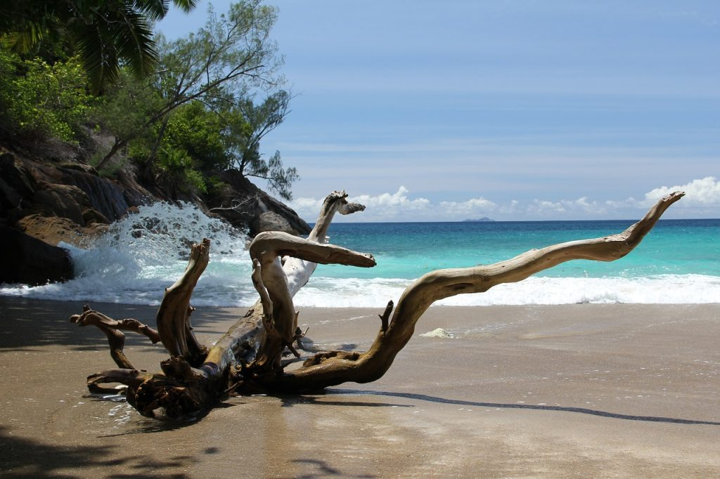 View of the Grand Anse Beach