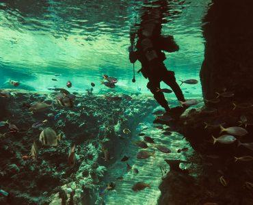 Scuba diving in Cambodia
