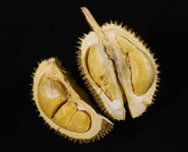 Healthy Durian Fruit