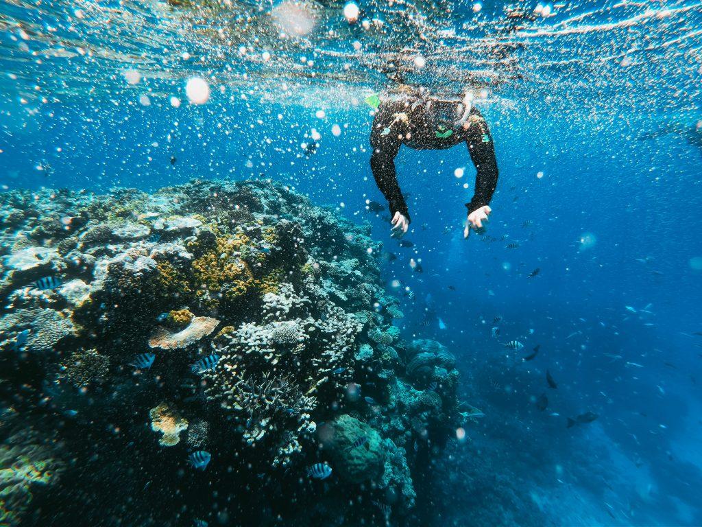 Deep-sea diving in Dubai