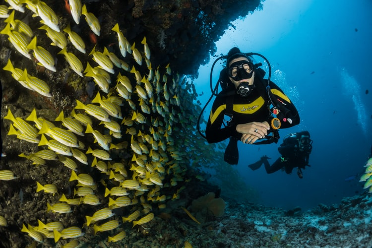 Scuba diving experience at maldives