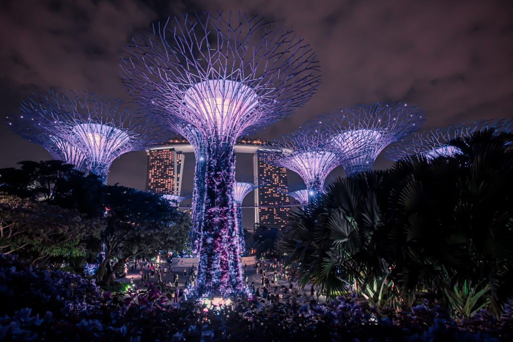 Gardens by the Bay at nighttime, one of the best free things to do in SIngapore