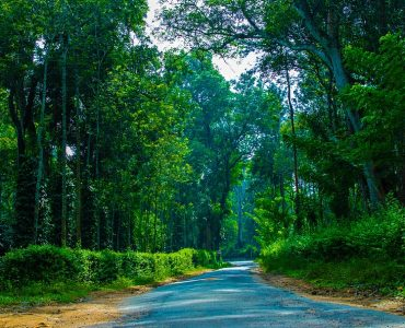 Road to coorg