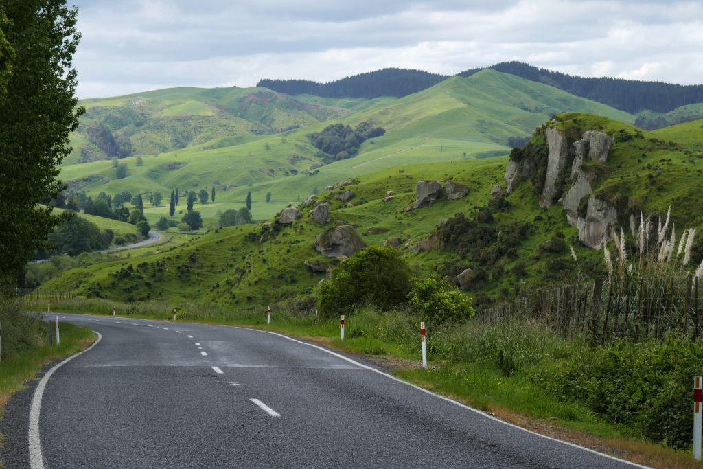 Scenic drive in New Zealand