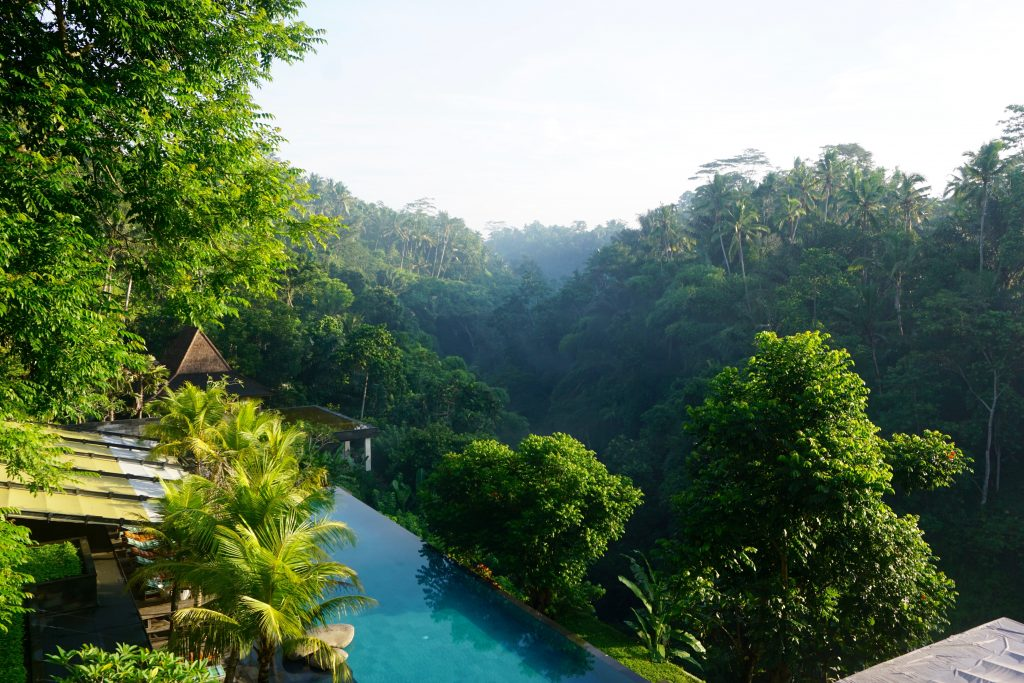 Best private pool villa in Ubud