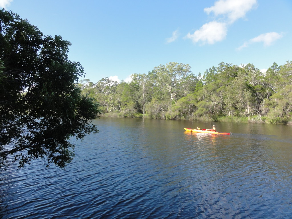 Kayaking on the Noosa River