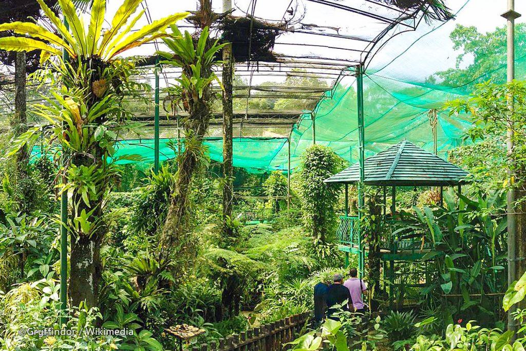Butterfly par perdana botanical garden