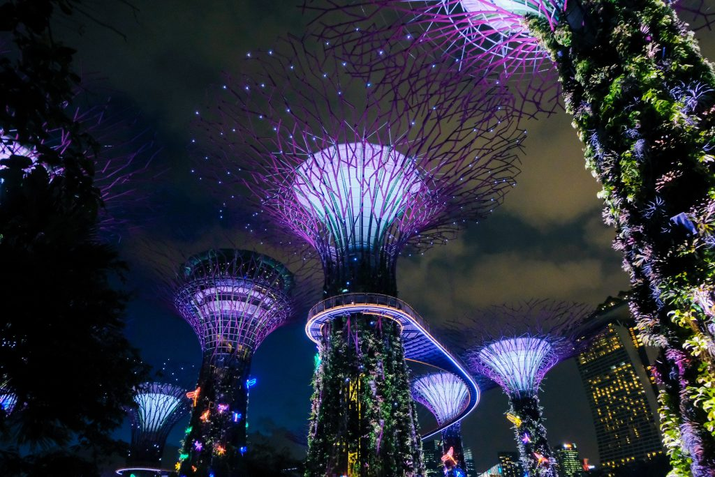 Gardens by Bay lit up during night time
