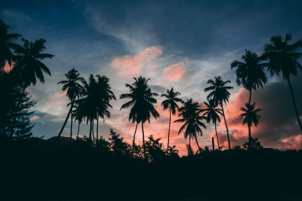 The evening beauty of Seychelles.