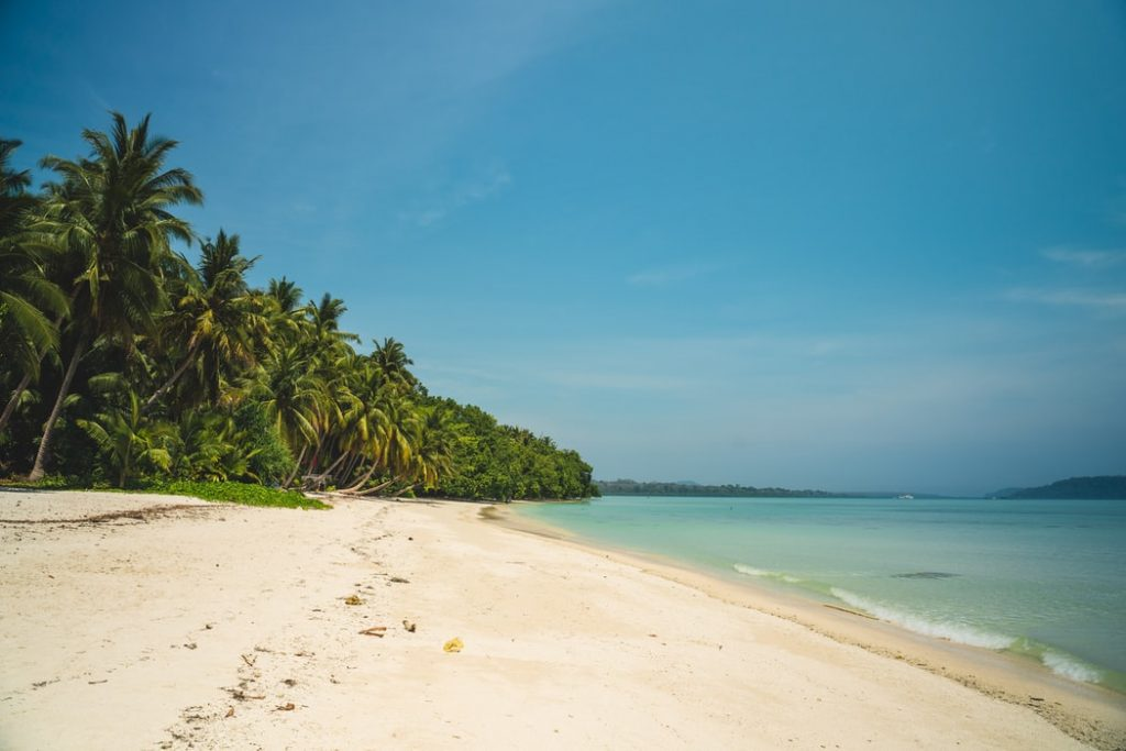 Havelock beach, one of the best destinations to be at during honeymoon