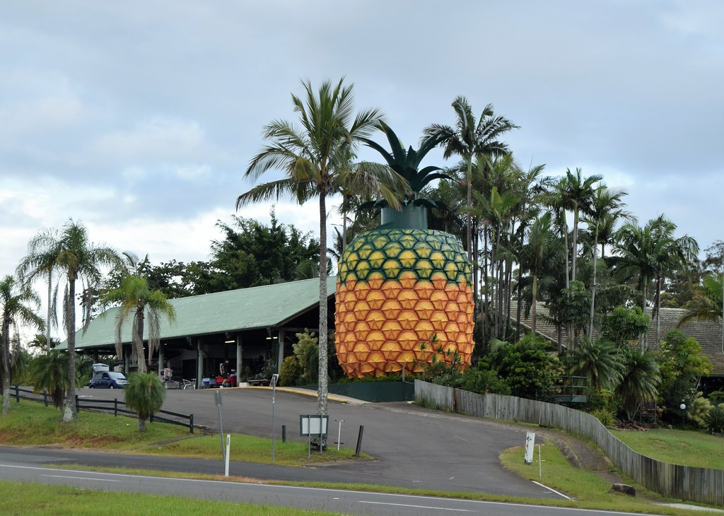 The big pineapple where music concerts happen