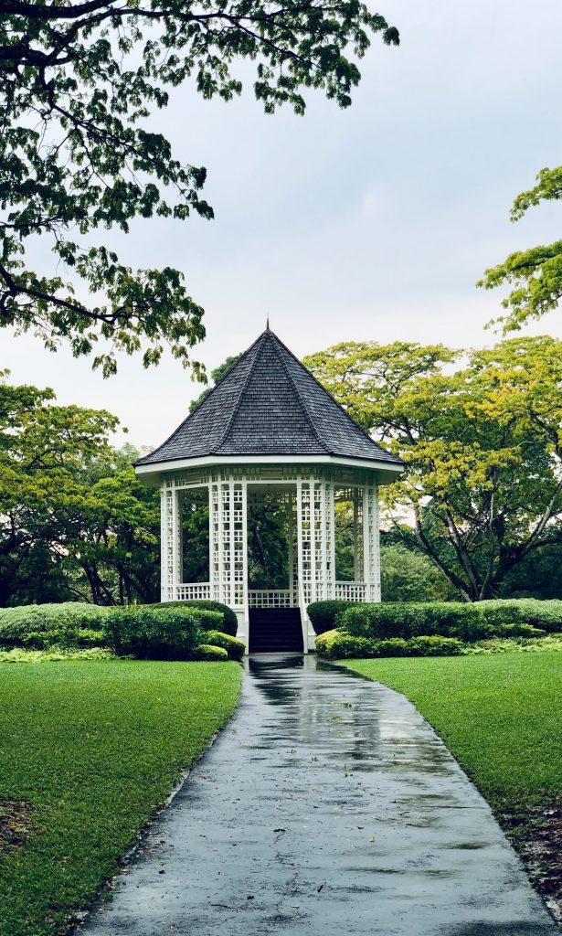 Singapore Botanical garden after a rain