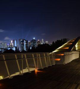 Henderson wave bridge in the night