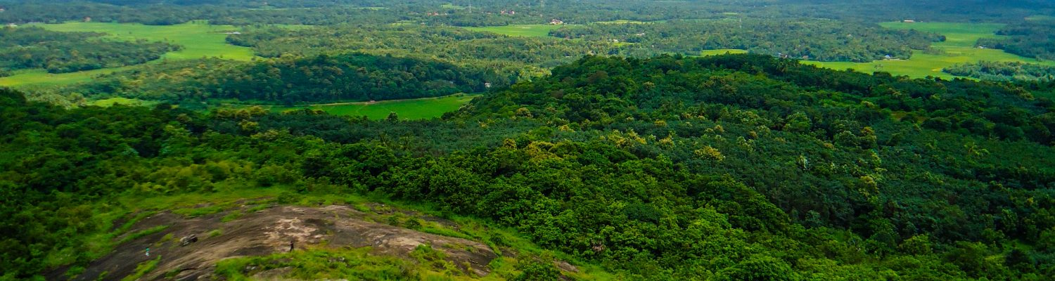 the moutains of kerala
