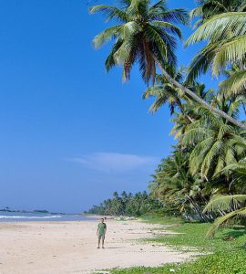 Places to visit in Matara