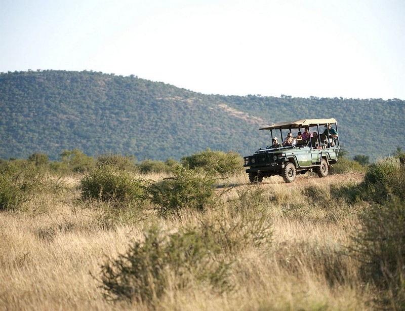 Game drive at Madikwe Private Game Reserve, North West, South Africa