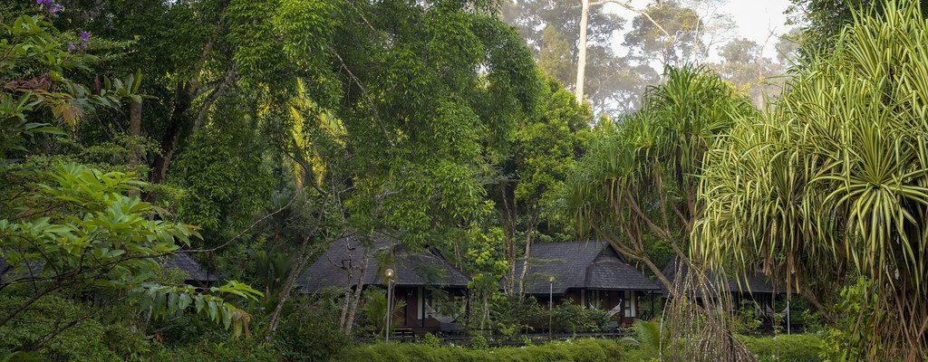 Borneo in Malaysia
