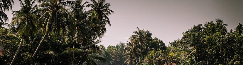 Weekend getaways from Kerala
