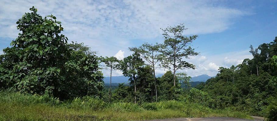 Miri in Malaysia