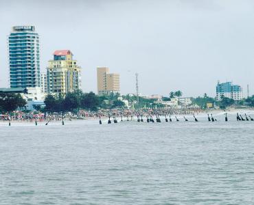 Calicut City