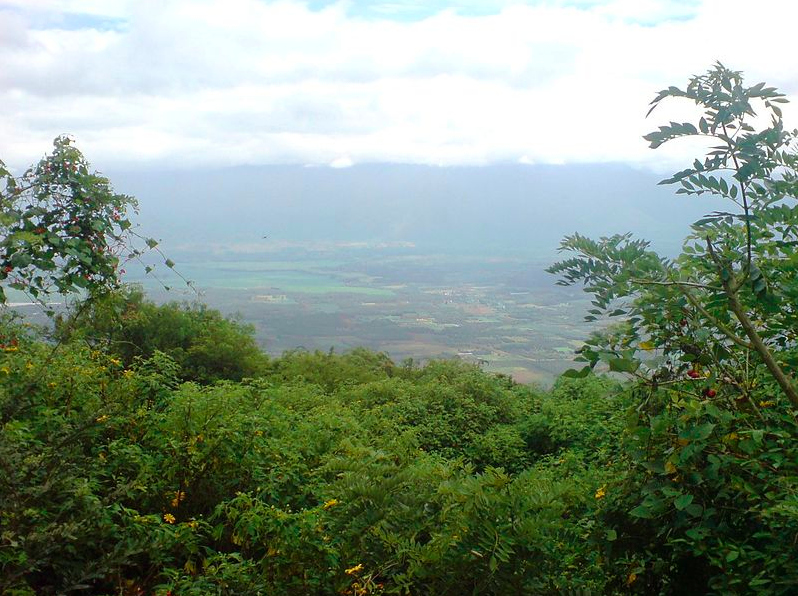Chellarkovil View Point