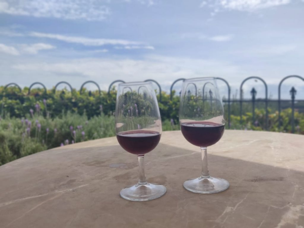 A picture of two glasses of red wine with a beautiful background