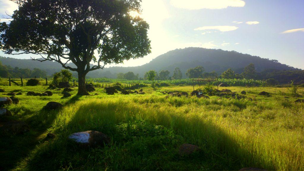 Landscape at Yelagiri