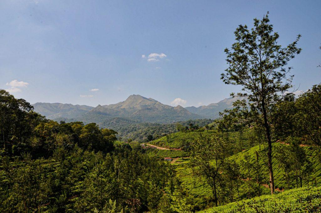 The beautiful Landscape of Wayanad