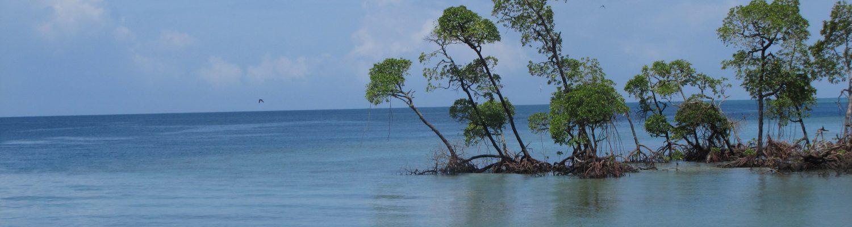 Andaman Travel
