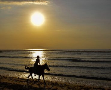 horse riding during sunrise
