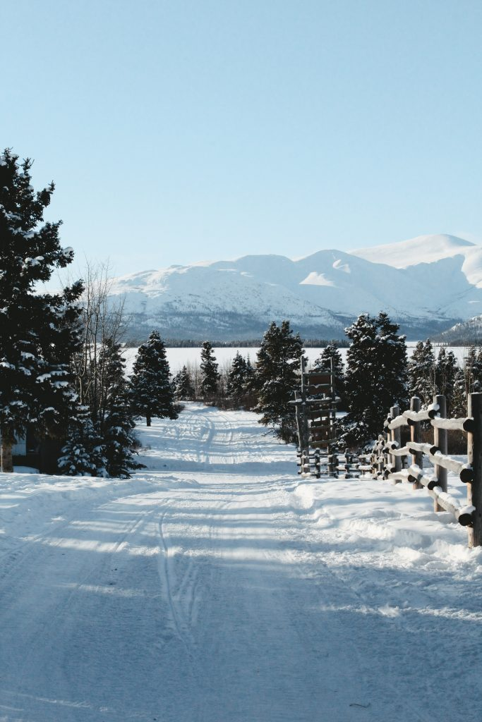 A picture of land capped with white snow in Whitehorse